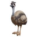 icon_ostrich_adult_emunorthern_128-b029d14c2a50069a75630027f9655d2e.png (128×128)