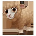 icon_sheep_child_dorsetbrown_128-984b111d6e008b5a4593ed2c36190f95.png (128×128)