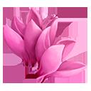crop_general_sowbread_pink_prizeddoober-c00ca709379d36af079616a0facf03a6.png (128×128)