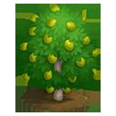 tree_general_ambarella_generic_icon-7ebc0251d0ebc7a40629139c24580791.png (128×128)