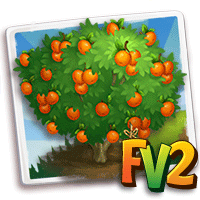 Heirloom Nugget Apricot Tree