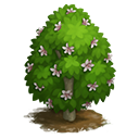 tree_general_magnolia_yulan_icon-85fd7e37b56fb28aea41df22c92cd86f.png (128×128)